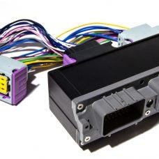 ECU Master Plug&Play Adaptor Loom - Toyota 2JZ (non VVTI)