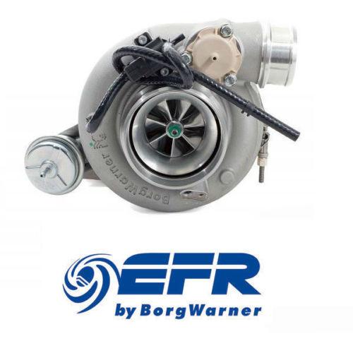 Borg Warner EFR8374 Int Gate