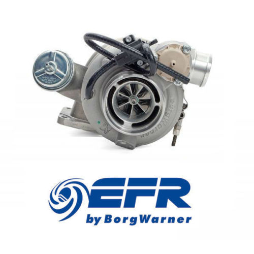 Borg Warner EFR 7064 Int Gate